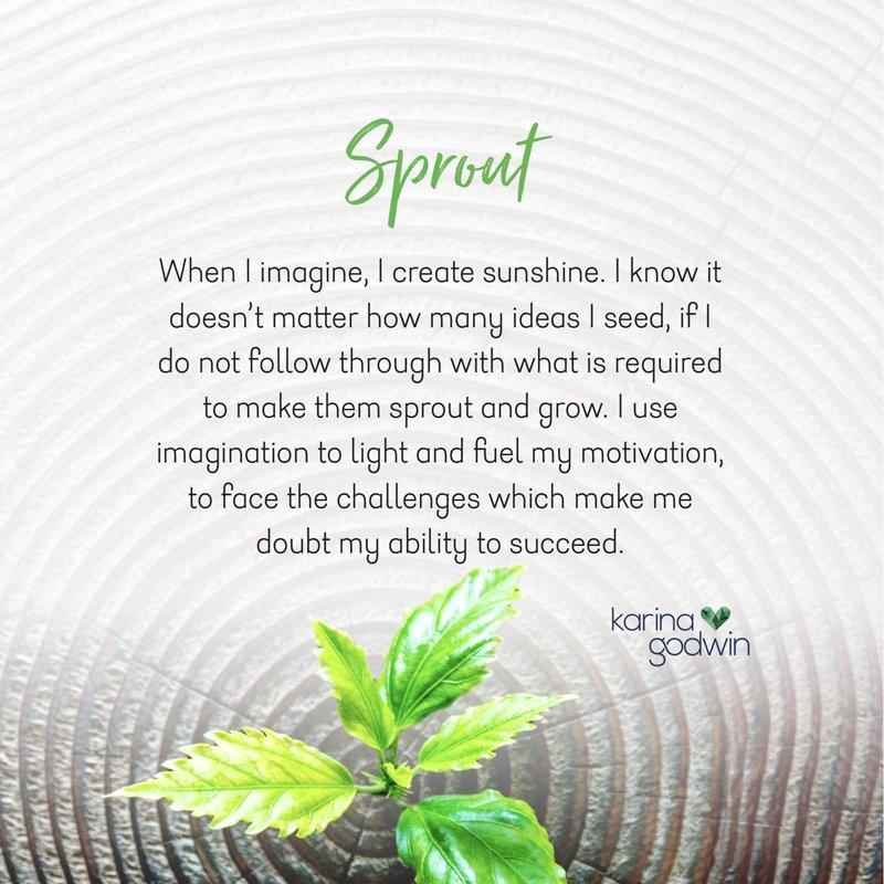 Bienestarwellbeing - sprout music